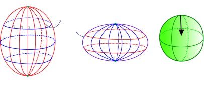 Global behavior of the principal foliations on an ellipsoid of revolution in