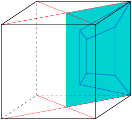 Schlegel diagram and a section.