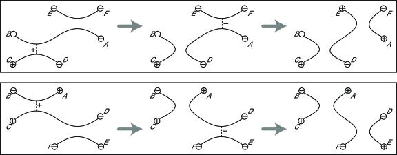 Movie presentations of Type1 and Type2 hexagon