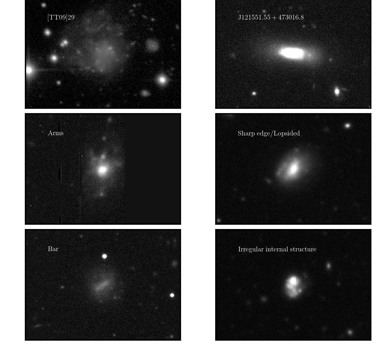 Examples of galaxies that were rejected in the visual inspection step. All images are