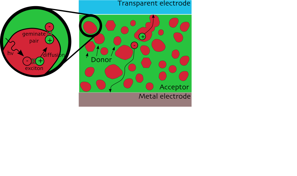 Structure of an organic solar cell.