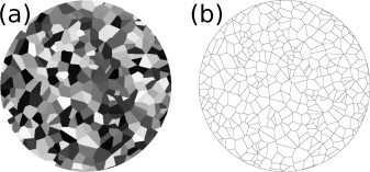 Example of a Voronoi tessellation with average 100nm grains in a 2048