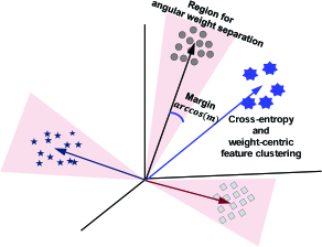 Visual interpretation of training stages 1 and 2 in 3-dimensional feature space. (a) After the base categories have been trained, their features are clustered close to the weights. (b) By applying the fine-tuning strategy using the proposed loss functions, features of the novel categories are clustered near the weights, and are sufficiently distant from weights of other categories. Note that all features and weights are located on a high-dimensional sphere in practice.