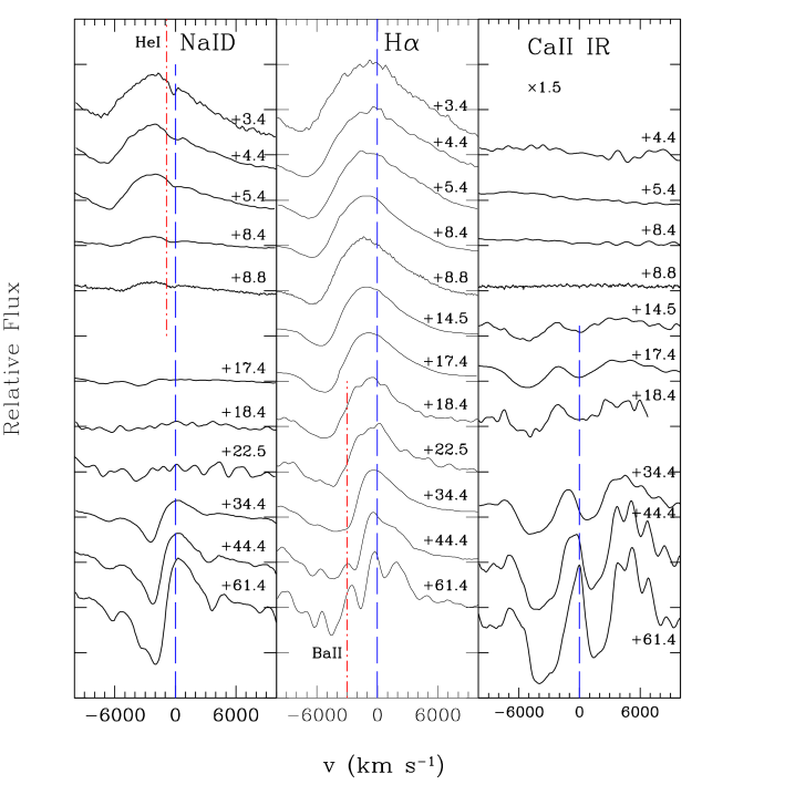 SN 2005cs in M51: evolution of selected spectral features during the photospheric phase. Dashed blue lines and dot-dashed red lines mark the rest wavelength positions of He I