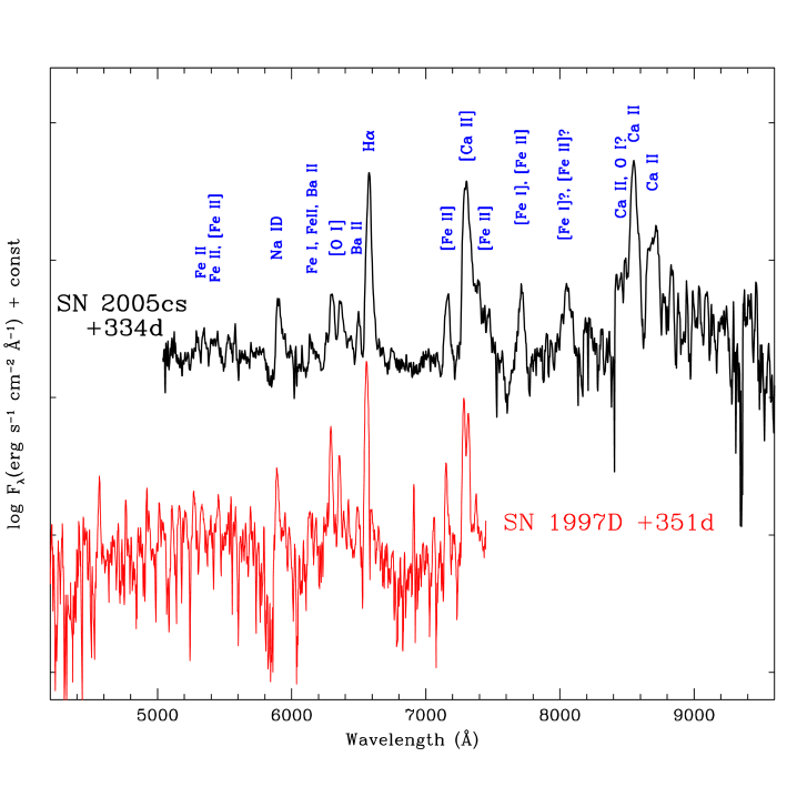 Comparison between nebular spectra of SN 2005cs and SN 1997D obtained about 1 year after the explosion, with line identification. The spectrum of SN 1997D, presented in