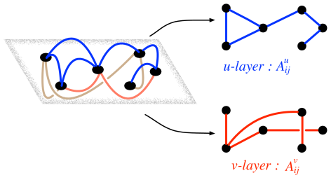 A cartoon of a multigraph on the top of which the reaction-diffusion system evolves. The black circles denotes the nodes common to both species, blue links denotes the channels through which species