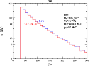 Transverse momentum spectra for the
