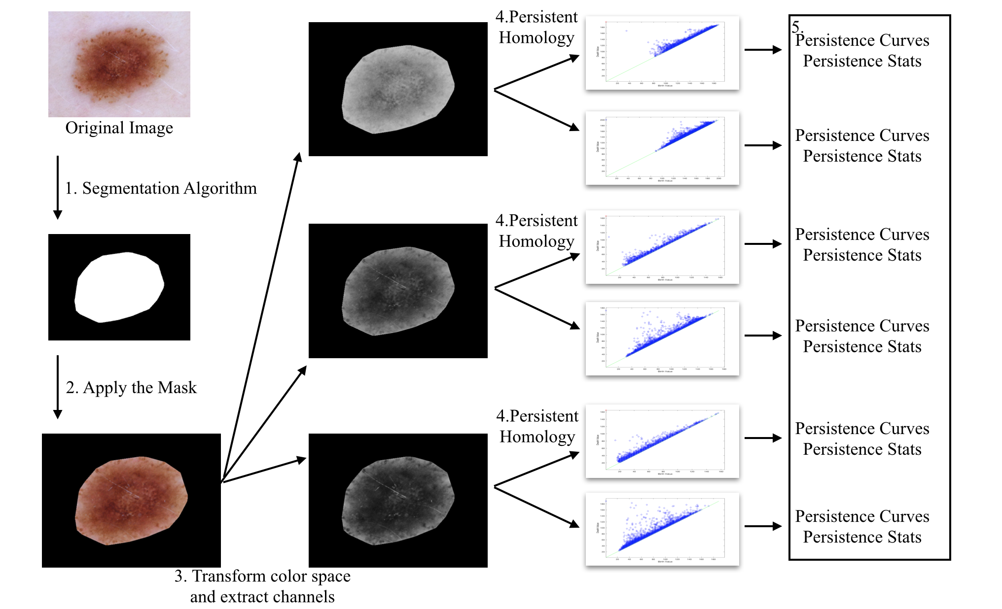 Schematic pipeline of our proposed features extractions. First, for each image, we apply the mask produced by the segmentation algorithm developed in Section
