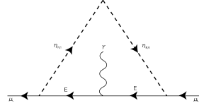 Diagram of the muon anomalous magnetic moment.