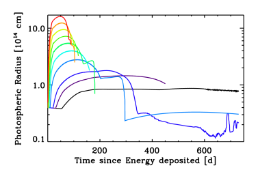 Time evolution of the velocity at the photosphere for the sequence of models associated with the 11M