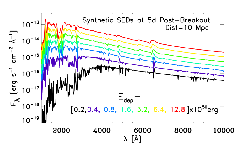Non-LTE synthetic spectra for the models presented in §
