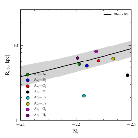 Stellar half-light Petrosian radius versus Petrosian absolute magnitude in the r band for our simulated galaxies at