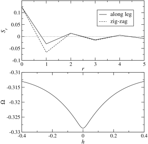 Magnetic properties of a single ladder at