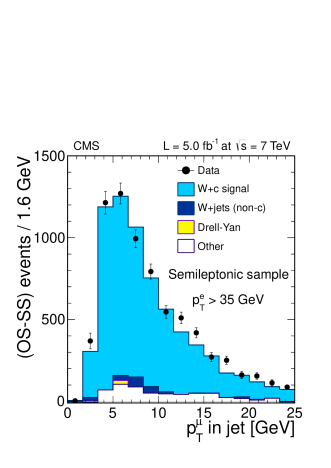 Distributions of the transverse momentum of the muon inside the leading jet of the event, after subtraction of the SS component. The channels shown correspond to muon and electron decay channels of the