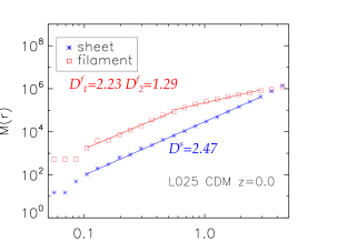 The fractal dimension of mass distribution in filaments and sheets for cold dark matter at z =0(Left), 2(Rigt) in L025.