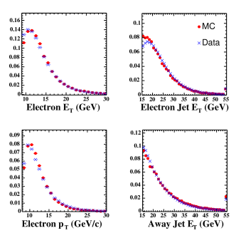 Data/Monte Carlo comparison of some quantities of tagged electron jets (