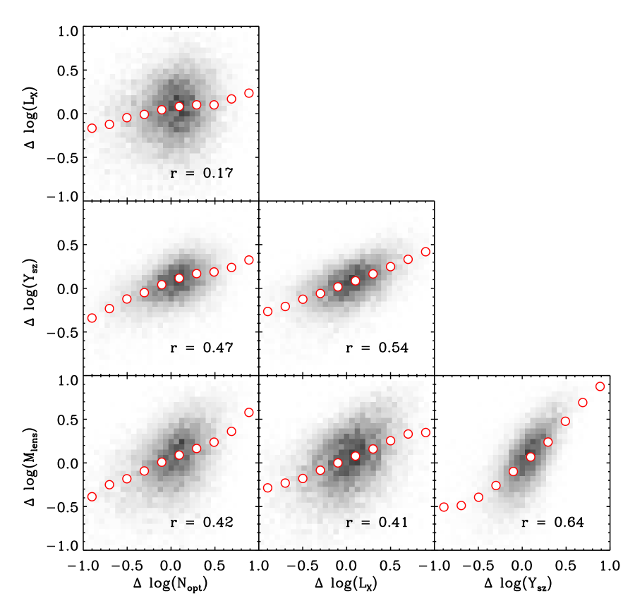 Correlations among deviations of observables in galaxy clusters with mass in the range