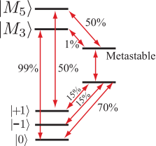 Simplified energy level diagram with key transitions through the metastable states. Indicated are approximate probabilities for these transitions occurring