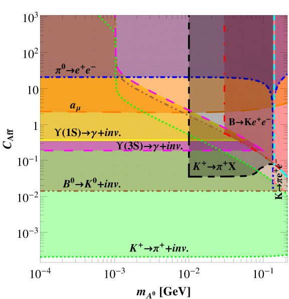 Constraints from meson decays and muon