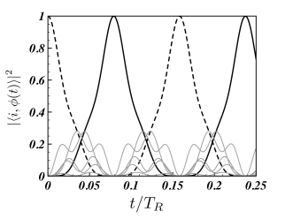 Population dynamics of a near-to-optimal network conformation of coupled dipoles, from