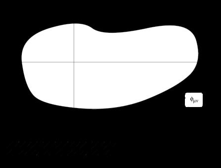 Schematic representation of the region in
