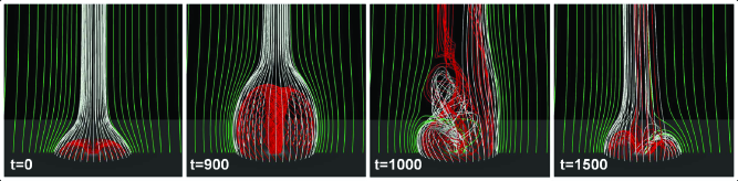 Snapshots of the magnetic field evolution during the generation of the jet. The red field lines are initially closed. The green and white field lines are initially open. All the field lines are plotted from fixed footpoints. The red and white field lines are regularly plotted along a circle of constant radius while the green field lines are plotted along the