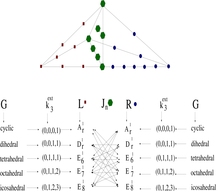 Example of an elliptic fibration of a K3 space, represented by a reflexive Newton polyhedron whose left and right part are characterized by two reflexive weight vectors, respectively. The square symbols on the left form a graph identical with the Dynkin diagram for the Cartan-Lie algebra