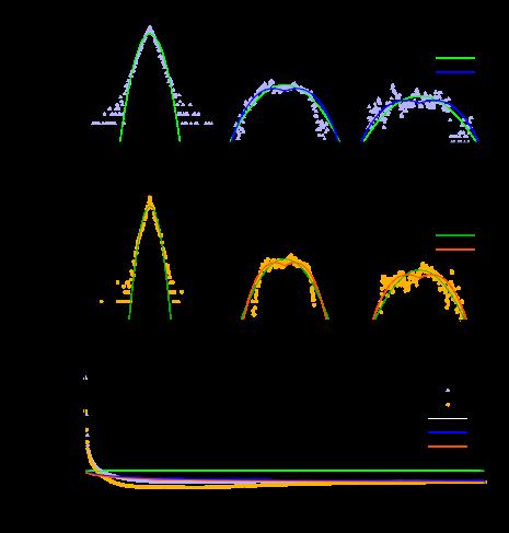 Spatio-temporal probability distributions