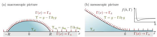 Liquid drop covered by insoluble surfactant at a solid-gas interface. (a) In the macroscopic approach, the equilibrium contact angle is determined by the solid-liquid interfacial tension