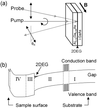 (a) Schematic of the setup for time-resolved Kerr rotation measurements with pump and probe pulses incident on the 2DEG sample. The pump pulse is circularly polarized and the probe is linearly polarized. The probe pulses are incident on the sample at a small angle from the normal (