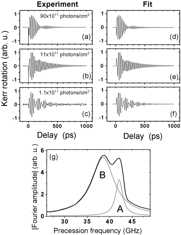 Time-resolved Kerr rotation signal of the 2DEG sample for various pump photon densities. The left column, plots (a)-(c), show the sample response at photon densities per pump pulse as labeled. The pump-photon density strongly influences the beating pattern in the Kerr oscillations. The right column, plots (d)-(f), show fits to the data in (a)-(c) using Eq.