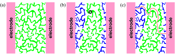 """A sketch of the electronic phase separation in a disordered film. (a) An insulating state, where superconducting regions (shown as white areas) are separated by the insulating spacers. (b) An insulating state on the very verge of the percolation transition: the green stripe highlights the """"last"""" or """"critical"""" insulating interface dividing two large superconducting clusters. The circle marks the critical (""""last"""") insulating """"bond."""" (c) The same system at the extreme proximity to the SIT on the superconducting side. As soon as the """"critical"""" insulating bond is broken, the path connecting electrodes through the superconducting clusters shown by the dotted line appears and the film turns superconducting. The system capacitance"""