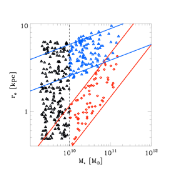 Mass-size relation of the galaxies we insert into the Ph-E-2 simulation. Red symbols have properties set according to the observed relation for compact, massive, quiescent galaxies, while blue ones follow the observed relation for the massive, star-forming galaxies. Below