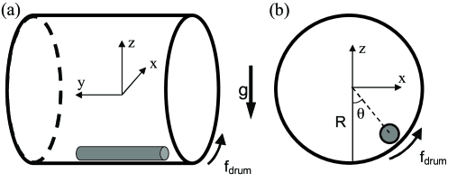 A sketch of the experimental setup. (a) Front view and (b) axial view of the apparatus. The direction of gravity is indicated by the downward arrow.