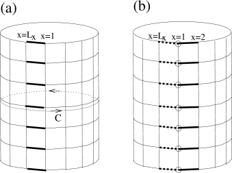(a) Schematic figure showing a vison threading the hole of a cylinder in the absence of vison tunneling terms. The dark (light) bonds correspond to