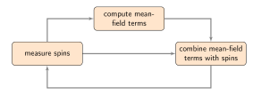 Algorithmically, the CIM follows a simple loop in which spins are repeatedly measured, then combined with a mean-field term derived from that measurement. We compare CIM performance with NMFA, an algorithm that follows the same loop using continuous real spin values in