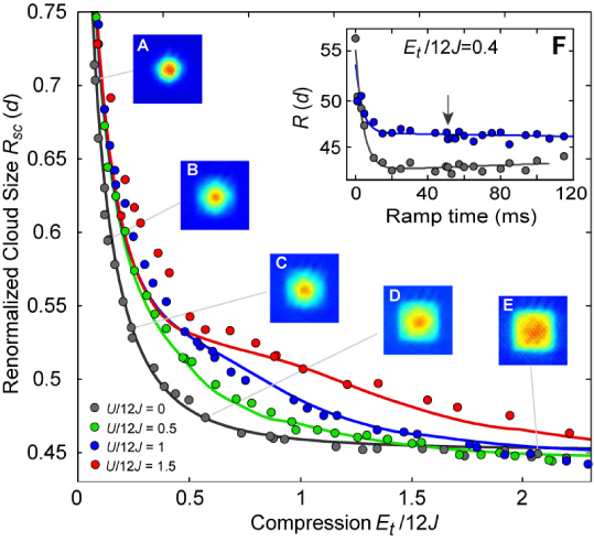 Cloud sizes of the interacting spin mixture versus compression. Measured cloud size