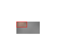 Comparisons of shading results on a photo patch (c)-(d) obtained using different network architectures. The input is a smooth photo patch (red inset). (a) Extracted tone map. (b) Edge tangent field of (a). (c) Hatching result from single-stream architecture. Artificial patterns appear that are unlike normal hatching. (d) Hatching result from two-stream architecture. Hatching-like textures are produced and artificial patterns are suppressed.