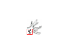 Comparisons of pencil outline results obtained by models trained with different loss functions. Inset image in red rectangle: the XDoG input.