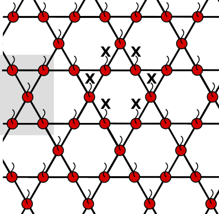 1-form symmetries of the (3,6,3,6) lattice act around each hexagonal plaquette. A bowtie subgraph is shaded in grey.