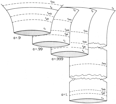 Throat geometry of a high-spin black hole. (Figure reproduced from Ref.