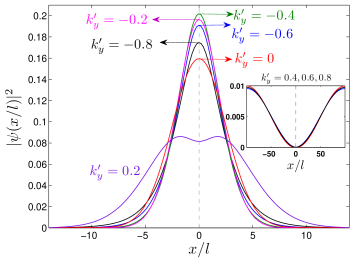 (Color online) The probability densities of the topological state in