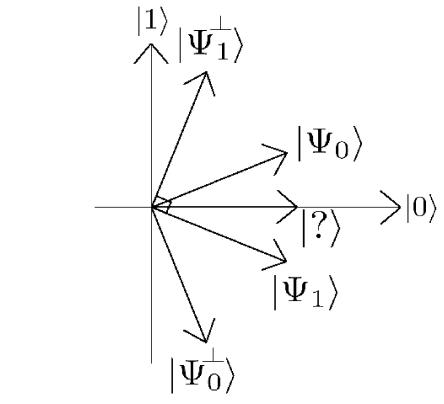 Basis vectors