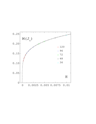 The magnetisation at the critical coupling as a function of