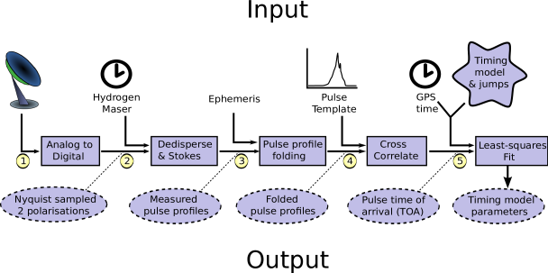 The processing pipeline for pulsar timing, step by step