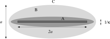 Schematic side view of the charged platelet