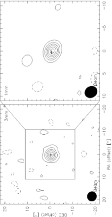 Continuum emission of the single field observations at 3mm (