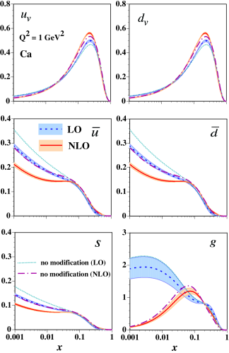 (Color online) Parton distribution functions in the calcium at