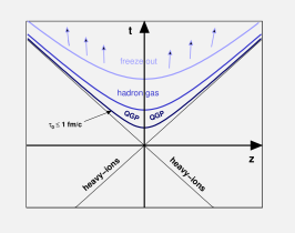 A schematic view of dynamics of a heavy ion collision along the collision axis.