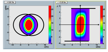 Energy density distribution in a non-central H.I.C. within a CGC initial condition in the transverse plane (left panel) and in the reaction plane (right panel). The two horizontal thick black lines in the right panel are the Lorentz contracted nuclei. The color gradation in the right side of each panel indicates the energy density scale in unit of GeV/fm